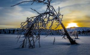 Kulde i vinternorge